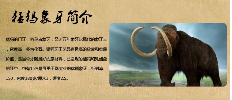 什么是猛犸象牙